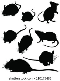 silhouettes of mouses,vector