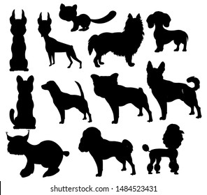 Silhouettes pets on white background is insulated
