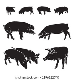 Silhouettes of pigs - black and white vector isolated illustration. Monochrome side view of animals drawing, graphic arts.
