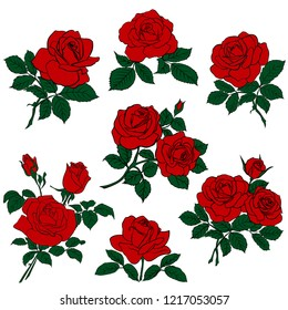 silhouettes of rerd roses and green leaves isolated on white background. Vector illustration.