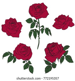 silhouettes of roses isolated on white background. Vector illustration.