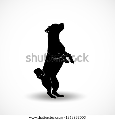Silhouettes of small dogs