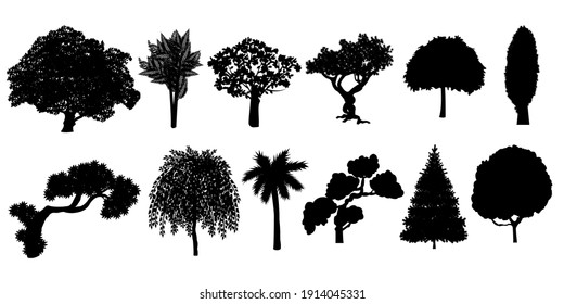 Silhouettes of trees big collection. Vector illustration