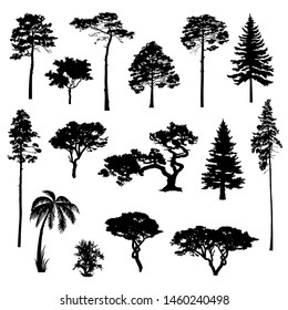 Silhouettes of the trees for design. Vector elements for landscape, background, banner, web-design, coniferous forest.
