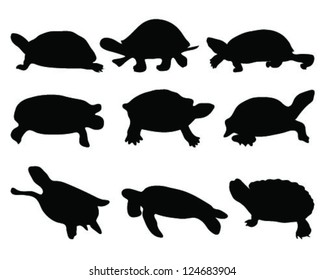 Silhouettes turtle-vector