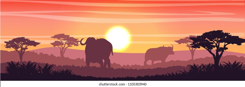 Silhouettes of two African black buffalo in the savannah. Grass and acacia trees. Realistic vector landscape. Nature and animals of Africa. Reserves and national parks.