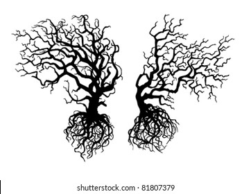 Silhouettes of two old crooked  trees