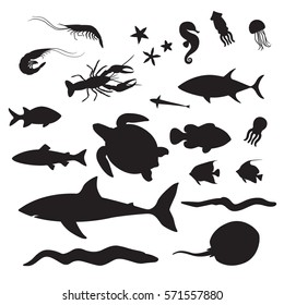 Silhouettes of the Underwater Inhabitants