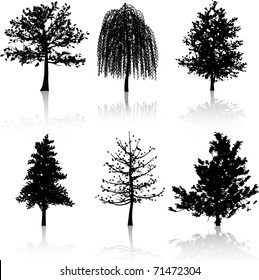 Silhouettes of various different trees