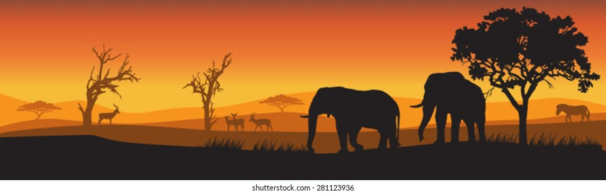 Silhouettes of wild African Elephants at sunset