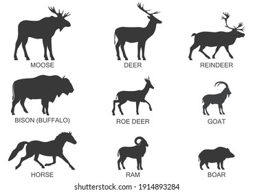 Silhouettes of wild herbivores, icon set. Vector illustration on a white background.