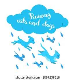 Silly cats and dogs poster with handwritten inscription. Raining cats and dogs card with hand drawn lettering. Flat style illustration isolated on white background. Editable vector graphics in EPS 8.