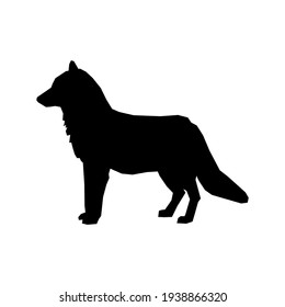 Siluet serigala. Logo vektor. wild animal. wolf wild. Ilustrasi vektor.