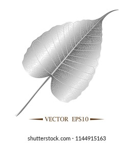 Silver leaves of Bodhi tree , Ficus religiosa or Sacred fig ,Symbols of Buddhism Vector Illustration.