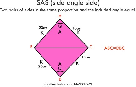 Similar Triangles. Triangles SAS side angle side. Two pairs of sides in the same proportion and the included angle equal. Mathematics lesson. Educational, geometry vector graphic.