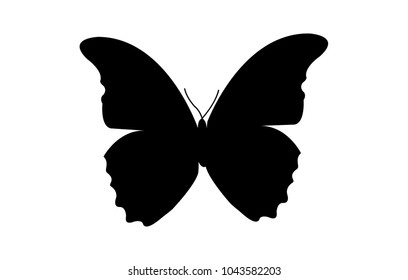 Simple, black butterfly silhouette