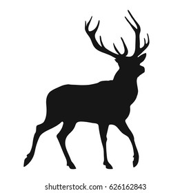 simple black silhouette of the walking buck, isolated on the white background