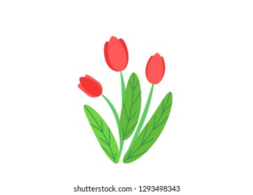 Simple bouquet vector with spring garden blooming flowers illustration. Fashion floral springtime nature plant elements isolated on white background in minimal style.