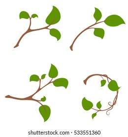 Simple Branch tree with leaves set and wreath. Vector illustration