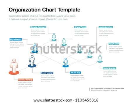 simple company organization hierarchy chart template stock vector