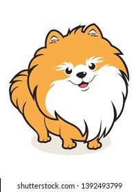 simple cute pomeranian dog mascots, cartoon or logo