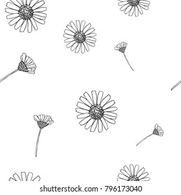Simple Cute Seamless Daisy Black and White Pattern. Chamomile Repeat Doodle Pattern on White background. Vector Illustration