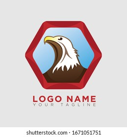 Simple eagle vision logo vector illustration.