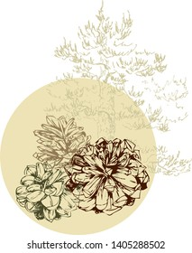 Simple and elegant floral decorative elements made of graphical sketch of pine cones. Botanical design for wedding cards and decorations. Grapical pine cones groups. Wreath. Set of pinecones. Lineart