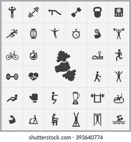 Simple gym icons set. Universal gym icons to use for web and mobile UI, set of basic UI gym elements