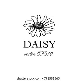 Simple Hand Drawn Daisy Flower Template for Logo Design or Poster. Vector Black and White Single Chamomile Flower on White Background