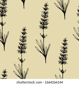 Simple hand-drawn vector seamless pattern. Branches of field lavender flowers in black outline on a gray-beige background. For prints of clothing fabrics, bedding, packaging, wallpaper.