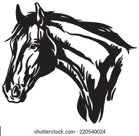 Simple illustration of horse head