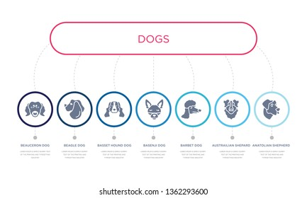 simple illustration set of 7 vector blue icons such as anatolian shepherd dog dog, austrailian shepard dog, barbet, basset hound beagle beauceron infographic design with 7 icons pack