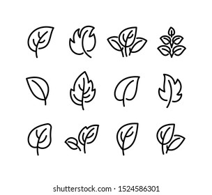 Simple leaf line icons, symbols, logo and graphic elements set isolated on white background. Vector template for natural, organic, bio, eco label and shape.