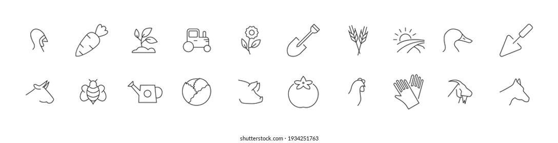 Simple line set of ecotourism icons. Premium quality objects. Vector signs isolated on a white background. Pack of ecotourism pictograms.