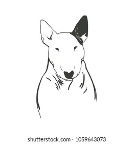 Simple lineart vector of a Bull Terrier