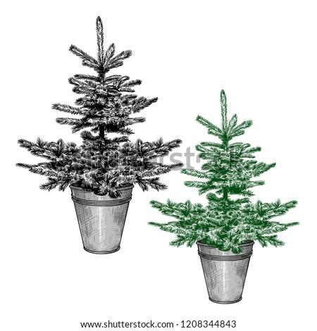 Simple Little Christmas Tree Galvanized Bucket Stock Vector Royalty