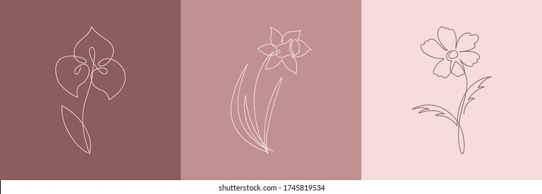 Simple Flower Drawing High Res Stock Images Shutterstock