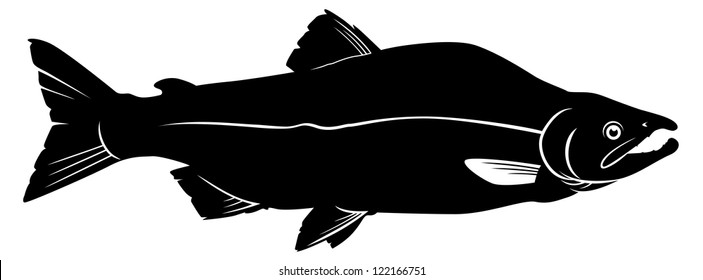 simple outline of a pink salmon