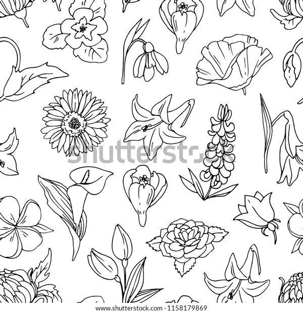 Simple Seamless Vector Pattern Different Flowers Stock Vector Royalty Free 1158179869