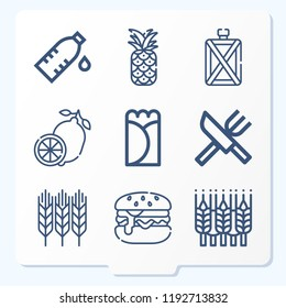 Simple set of 9 icons related to food outline such as cutlery, wheat, burrito, lemon, pineapple, burger, canteen symbols