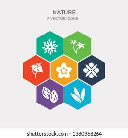 simple set of acicular, almond, alstroemeria, anemone icons, contains such as icons anthurium, aster, astrantia and more. 64x64 pixel perfect. infographics vector