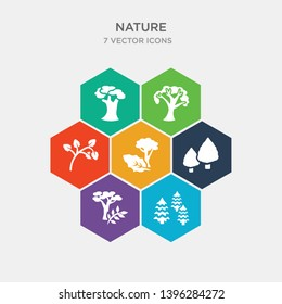 simple set of arborvitae tree, black ash tree, white ash tree, bigtooth aspen icons, contains such as icons quaking aspen basswood american beech and more. 64x64 pixel perfect. infographics vector