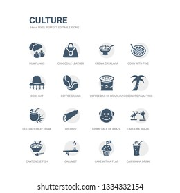 simple set of icons such as caipirinha drink glass of brazil, cake with a flag, calumet, cantonese fish, capoeira brazil dancers, chimp face of brazil, chorizo, coconut fruit drink with straw,