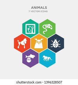 simple set of trapeze artists, caviar, app bug, big eyes owl icons, contains such as icons poodle, leash, herpetarium and more. 64x64 pixel perfect. infographics vector