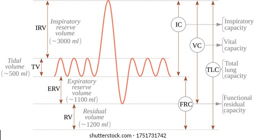 Simple spirometry is a simple test used to diagnose lung function from measuring of the lung volumes