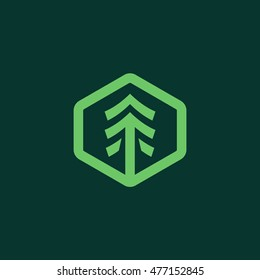 Simple tree badge hexagon shape icon logo graphic