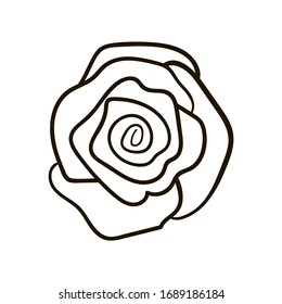Simple vector hand drawn rose isolated on white background. Floral element design. Outline flower for web, greeting card, poster, clothes.