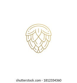 Simple vector illustration of outline graphic logo design template of natural hop flower for beer brewing hand drawn with golden lines