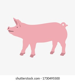 Simple vector illustration of a pig isolated on white background. Cartoon domestic animal illustration.